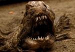 Агрессивная зубатка